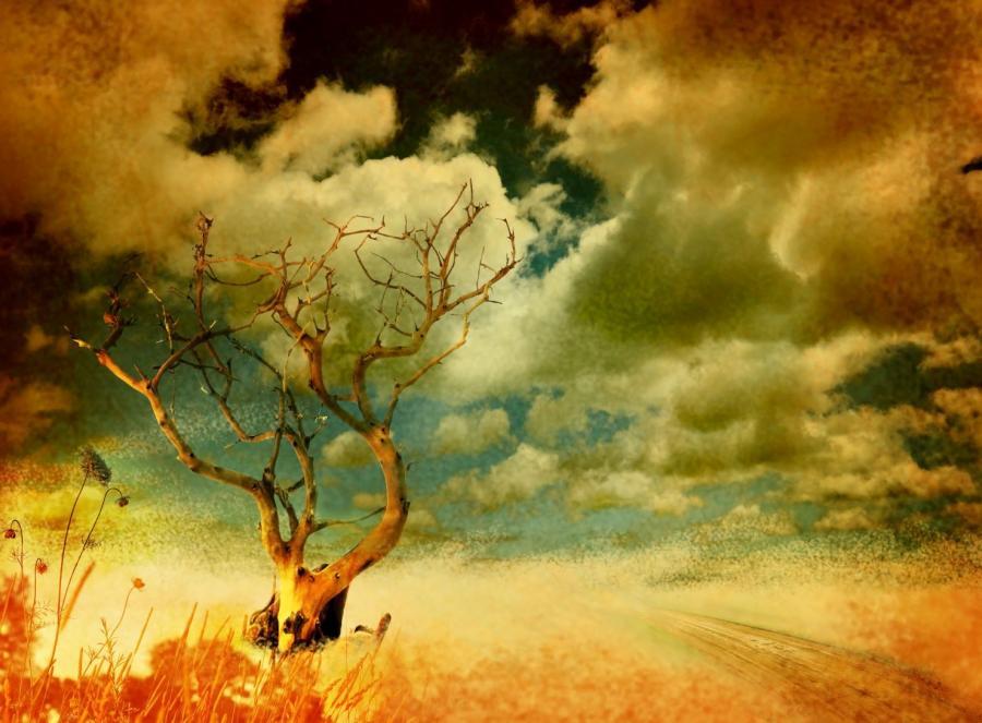 Billedet forestiller et dramatisk landskab, hvor himmel og jord næsten går i et. I forgrunden er der et tørt træ og himlen er fyldt med skyer.